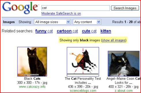 blackcat google images color